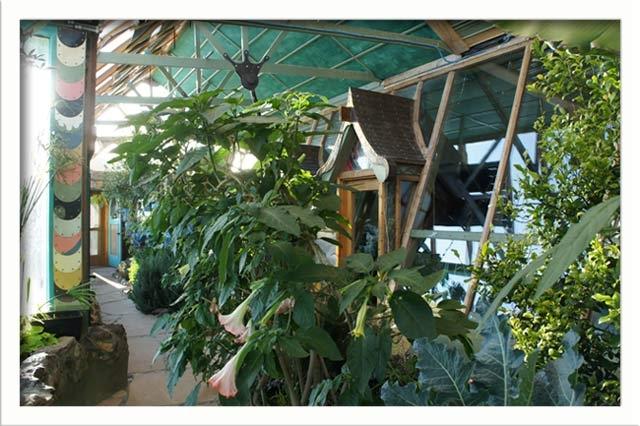 The lush greenhouse area