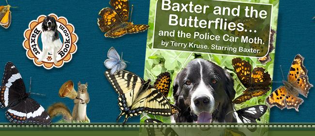 Baxter and the Butterflies eBook